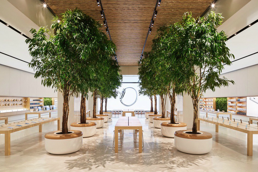 Apple Store Is The Most Profitable Shops In The World | RECHI
